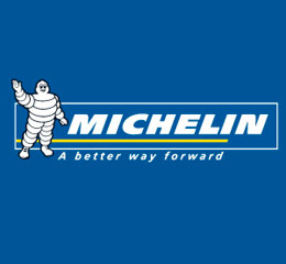 Michelin reduced its net income by 28.3% in 2013